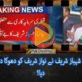 shahabaz sharif betrayed nawaz sharif