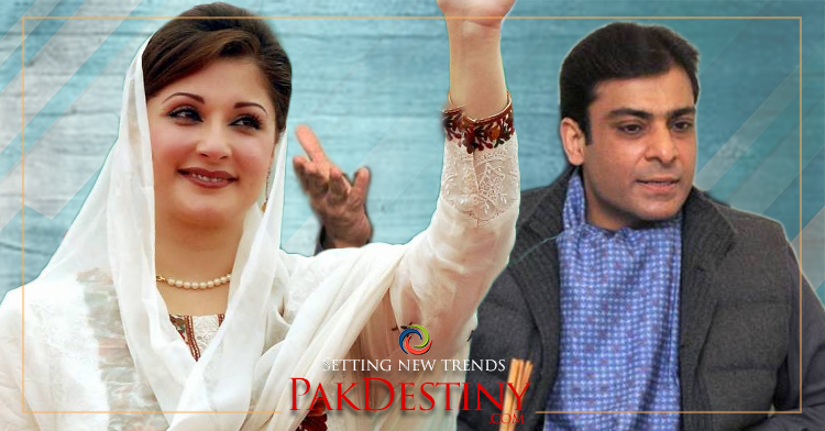 Efforts to make Hamza hero fail as he will remain a 'pigmy' in his comparison with Maryam Nawaz